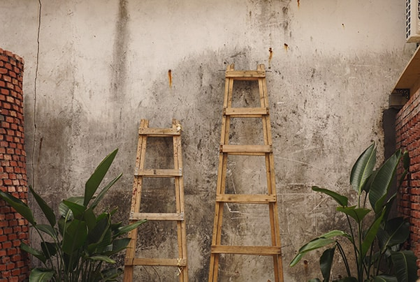 Ladders in backyard